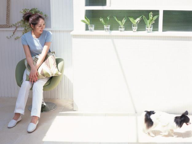 ペットと暮らす時の注意点